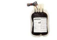 Blood bag on white background Royalty Free Stock Photo