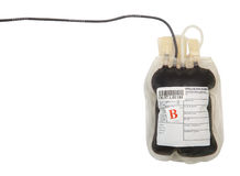 Blood bag on white background Stock Photography