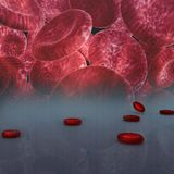 blood cell Royalty Free Stock Image