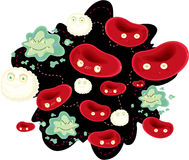 Blood cells Stock Photography