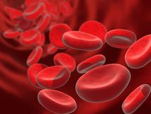 Blood cells Stock Images