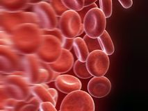 Blood cells Royalty Free Stock Photos