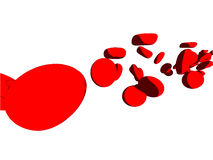 Blood cells Stock Image