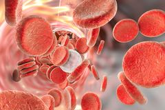 Blood cells, 3D illustration Royalty Free Stock Photo