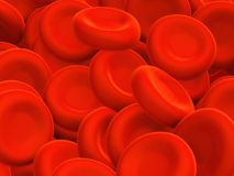 Blood cells Royalty Free Stock Image