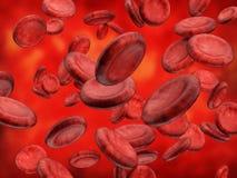 Blood cells Stock Photos