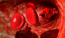 Blood Cells In A Vein Royalty Free Stock Photos