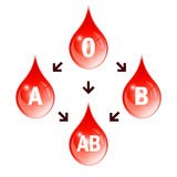 Blood compatibility scheme. On white background Royalty Free Stock Photography