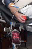 Blood Donation, Donate, Donor Transfusion Medical. A volunteer blood donor donates whole red blood. Donating blood and plasma during a blood drive can save a Stock Photos