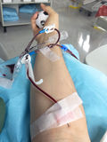 Blood donation in the hospital bed Royalty Free Stock Photo