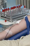 Blood donation new 6 Royalty Free Stock Image
