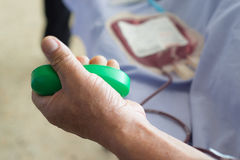Blood donor at donation. With a bouncy ball holding in hand royalty free stock photo