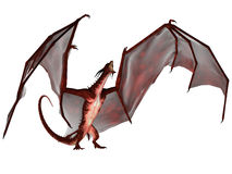 Blood Dragon Scream. A creature of myth and fantasy the dragon is a fierce flying monster with horns and large teeth Stock Photos