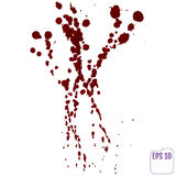 Blood drip. Vector red Ink stain, blots and splashes. Isolated Realistic paint drops, design elements vector illustration