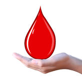 Blood drop in hand Royalty Free Stock Image