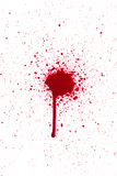 Blood drop splatter. A high resolution image of blood or ink Royalty Free Stock Photography