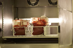 Blood Fridge in hospital Stock Images
