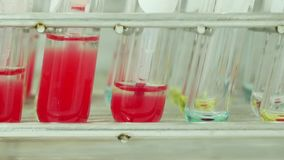 Blood group testing. Blood group testing in lab stock video