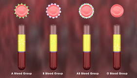 Blood Groups Royalty Free Stock Images