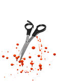 Blood and hair cutting scissors Royalty Free Stock Photography