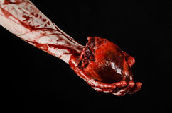 Blood and Halloween theme: terrible bloody hand hold torn bleeding human heart isolated on black background in studio. Blood and Halloween theme: terrible bloody royalty free stock images