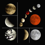 Blood harvest supermoon is a lunar eclipse Royalty Free Stock Images