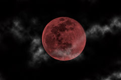 Blood moon Stock Photography