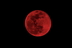 Blood moon. Concept of a red full moon against a black sky Royalty Free Stock Photo
