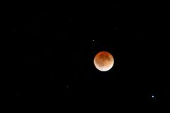 Blood moon eclipse Stock Images