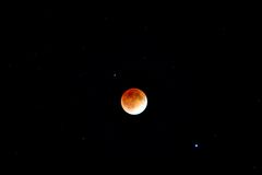 Blood moon eclipse Stock Photography