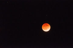 Blood Moon Royalty Free Stock Photos