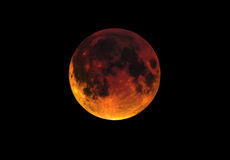 Blood moon luna eclipse Stock Image