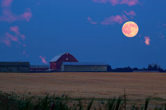 Blood Moon Rising from Farm(North of Toronto) Royalty Free Stock Photo
