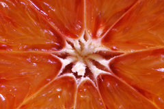 Blood orange. Close-up of a blood orange Stock Photos