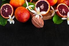 Blood orange background Royalty Free Stock Images