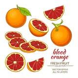 Blood orange fruit Royalty Free Stock Image