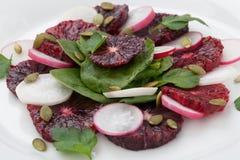 Blood Orange - Radish Salad Stock Photography