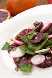 Blood Orange - Radish Salad Royalty Free Stock Photography