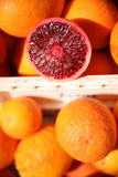 Blood orange samples Royalty Free Stock Photos
