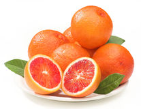 Blood oranges Stock Images