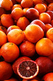 Blood oranges Royalty Free Stock Photos