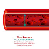 Blood Pressure Infographic Royalty Free Stock Image
