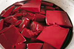Blood Pudding royalty free stock photos