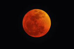 Blood Red Moon. During Lunar eclipse. Concept photo of religion, spirituality, mysticism and faith Royalty Free Stock Photography