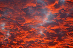 Blood Red Sky. A photograph of an intense red sky during the evening stock images
