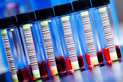 Blood samples Royalty Free Stock Image