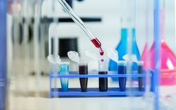 Blood samples for research in microtubes Stock Photos