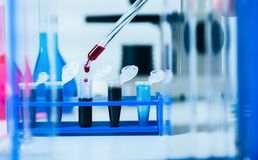 Blood samples for research in microtubes. Royalty Free Stock Images
