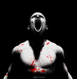 Blood scream Royalty Free Stock Photos