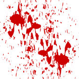 Blood splatter. On a white wall Royalty Free Stock Photos
